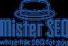 Mister SEO Logo